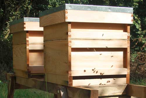 Bee Hives Explained