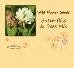 Garden Wild Flower Seeds, Butterflies & Bees Mix