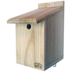 Garden Bird Nest Boxes