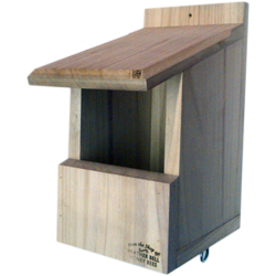 Garden Bird Nest Box, Flycatchers