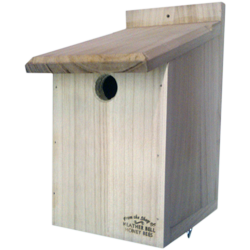 Garden Bird Nest Box, Sparrows, Great Tits