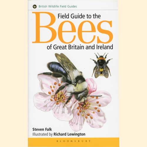 Book, New: Field Guide to Bees of Great Britain