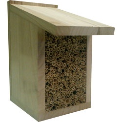 Solitary Bee Nest Box, Insect House