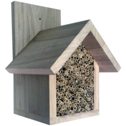 Solitary Bee Nest Box, Insect House, Gabled Roof