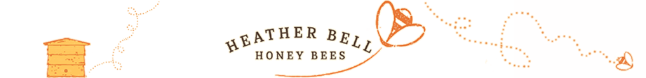 Shop Online, Heather Bell Honey Bees, Beekeeping Cornwall