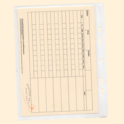 Bee Hive Inspection Record Card, Large A4