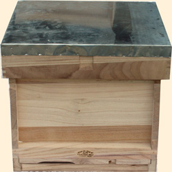 National Assembled, Complete Hive, Extra Deep 14x12 Box