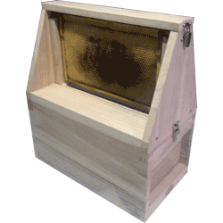 National Bee Hive, Assembled, Nucleus Observation Hive, 6 Frame, Extra Deep 14x12