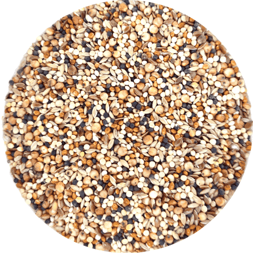 Garden Wild Bird Food, Finch Seed Mix, 1kg
