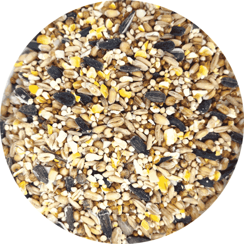 Garden Wild Bird Food, Premium Seed Mix, 1kg