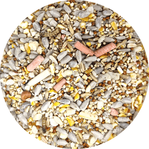 Garden Wild Bird Food, Robin & Songbird Mix, 1kg