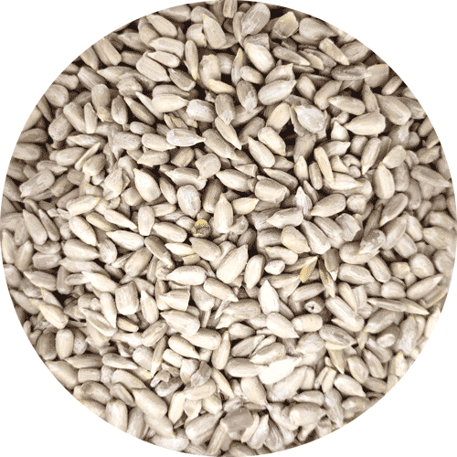 Garden Wild Bird Food, Sunflower Hearts, 1kg