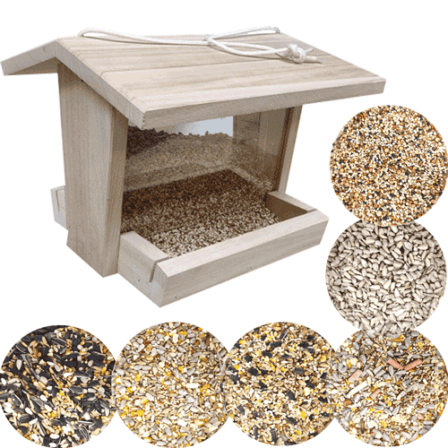 Garden Bird Feeder & Food Bundle